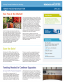 Lcch Newsletter Covers April 2013